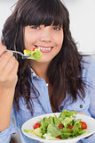 Smiling brunette having a salad for lunch