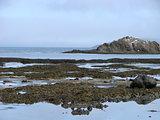 alexander's island