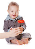 Small baby looking on red flower