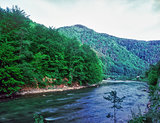 Carpathian landscape with a river.