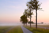 bicycle path in misty morning