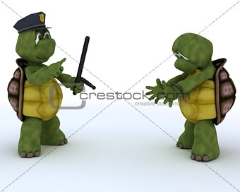 tortoises as cops and robbers