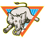 Elephant Jumping Bucking Triangle