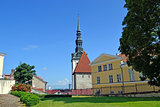 Garden in old Tallinn
