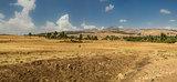 Suba Landscape