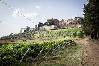 Brolio Castle and the nearby vineyards