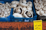 Edible mushrooms in a box on the market.
