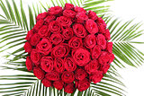 A huge bouquet of red roses. The isolated image on a white backg