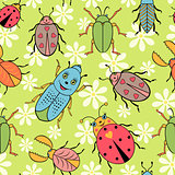 cute colorful beetles