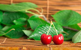 Cherry branch with leaves