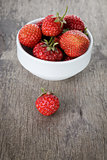 fresh garden strawberry in white bowl