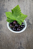 fresh garden blackcurrant in white bowl