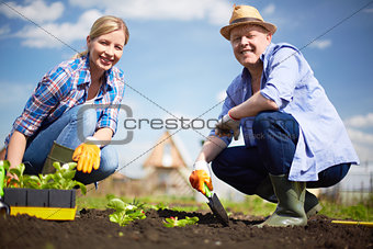 Farmers in the garden