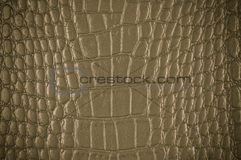 Old Grunge Leather Background Or Texture