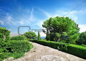 Vorontsov garden