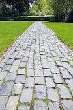 Garden Cobblestone Path