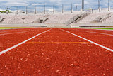 Orange track dog eye view