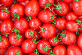Healthy food, background. Tomato