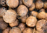 Coconuts for sale on a farmers market