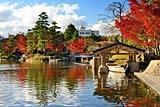 Fall Foliage in Nagoya, Japan