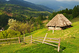 The picturesque little farm in the Carpathian Mountains, Mizhhir
