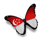 Singaporean flag butterfly, isolated on white