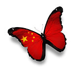 Chinese flag butterfly, isolated on white