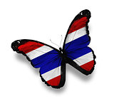 Thai flag butterfly, isolated on white