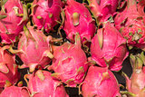 Bunch of pink dragon fruits or pitayas.
