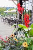 Planter Flowers by Restaurant Outdoor Seating