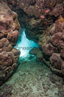 Cave in underwater tropical reef