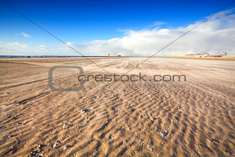 windy beach by North sea