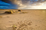 sand beach by North sea in Netherlands