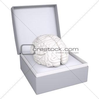 Brain in open gift box