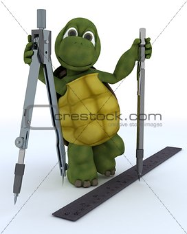 tortoise with drawing aids