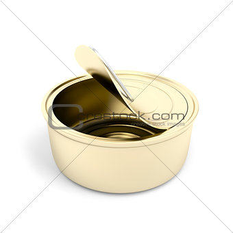 Empty pate can