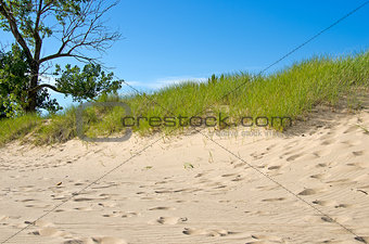Michigan sand dune