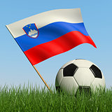 Soccer ball in the grass and flag of Slovenia.