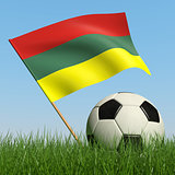 Soccer ball in the grass and flag of Lithuania.