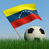 Soccer ball in the grass and the flag of Venezuela