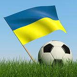 Soccer ball in the grass and flag of Ukraine.