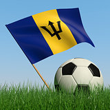 Soccer ball in the grass and the flag of Barbados