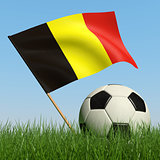 Soccer ball in the grass and flag of Belgium.