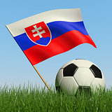 Soccer ball in the grass and flag of Slovakia.