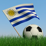 Soccer ball in the grass and the flag of Uruguay