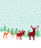 Deer and fir trees in the snow