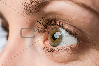 closeup eye and iris of young woman