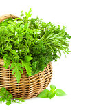 Fresh Spicy Herbs in Basket / isolated on white