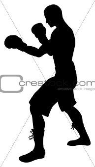 Boxer Silhouette