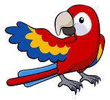 Red parrot illustration